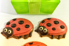 Ladybug-